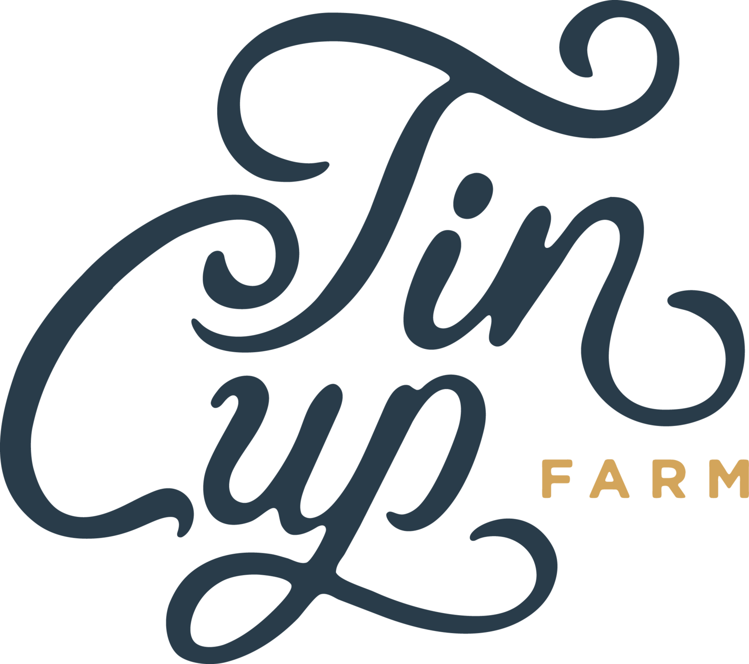 Tin Cup Flower Co. - Houston Floral