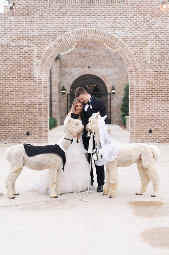 Swish & Click Photography - Houston Wedding Photography